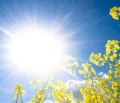 Soleil au zénith