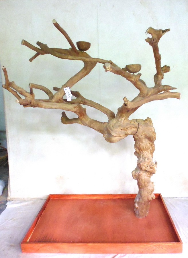 Arbre en Bois Java - Taille Extra Large - AL3545 : 449,00 €