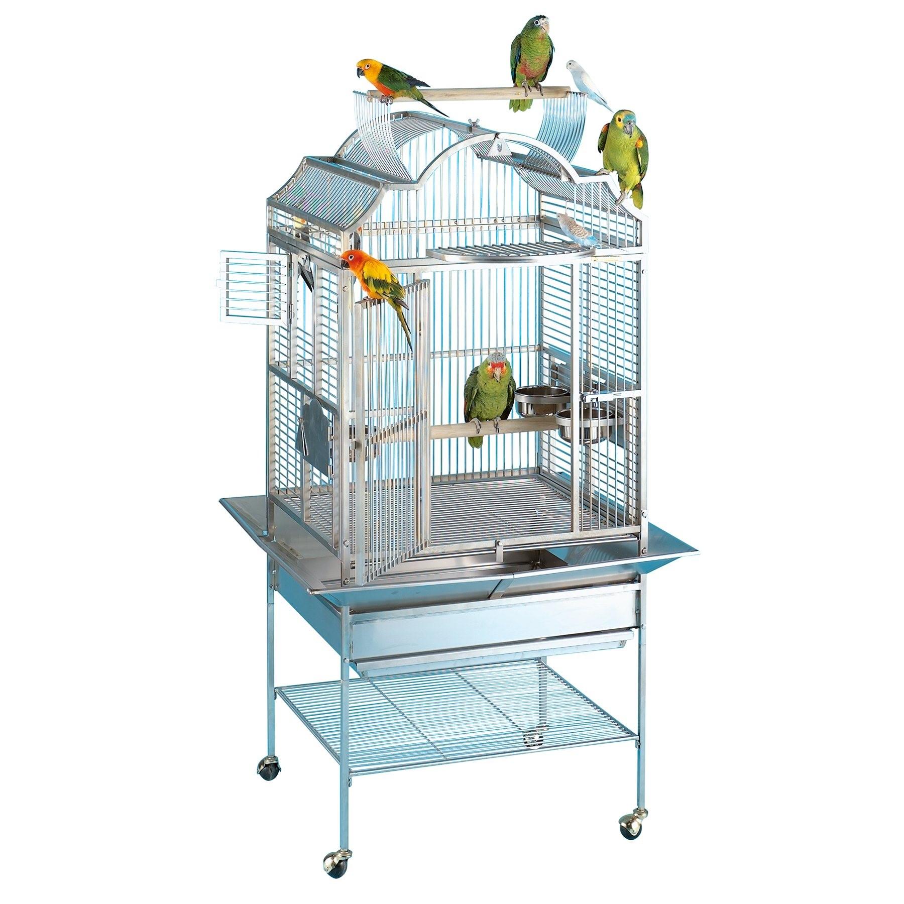 get cheap pick up huge discount Cages de perroquets | xisdihandchart.cf