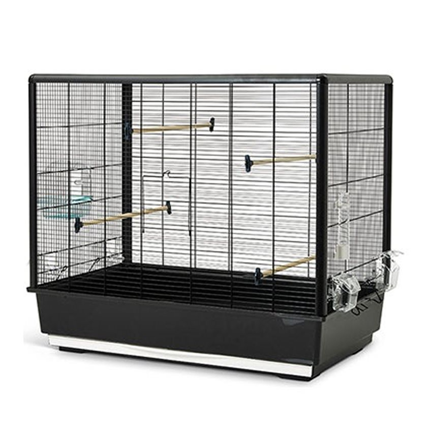 baignoire oiseaux cage awesome cage oiseau canaris. Black Bedroom Furniture Sets. Home Design Ideas
