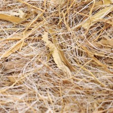 Mélange de Fibre Naturelles pour Nid : Coco + Sisal + Tiges Naturelles de Maïs -  500 gr