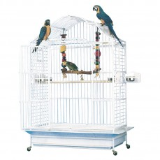 Cage Perroquets KING'S CAGES - Modèle 406-25