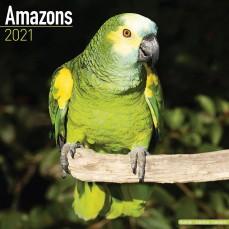 Calendrier 2021 - Les Amazones