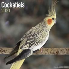 Calendrier 2021 - Les Perruches Calopsittes