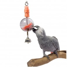 La Sphère de Foraging - Distributeur Alimentaire pour Perroquet