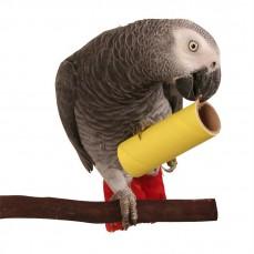 Rouleaux de Carton Large - Lot de 5 - Jouet Oiseaux