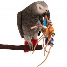 Zoo-Max - Rollicking - Jouet Oiseaux