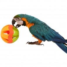 Fun Ball Grelot Large - Jouet Oiseaux
