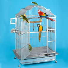 Cage Inox Perroquet KING'S CAGES - Modèle 406-25 Inox