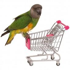 Shopping Caddie Chariot de Courses pour Perroquets - Jouet Perroquet