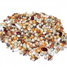 Versele Laga - Mélange de Graines à cuire Perroquet Dinner Mix - Vrac 3 kg