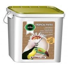 Orlux Tropical Pâtée Premium - Pâtée Grasse aux Fruits Secs - 5 kg