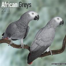 Calendrier 2018 - Les Perroquets Gris du Gabon