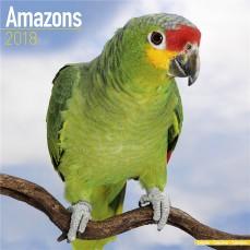 Calendrier 2018 - Les Amazones