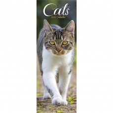 Calendrier 2019 - Les Chats - Format Slim