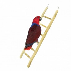 Nature Java Ladder - 60 cm