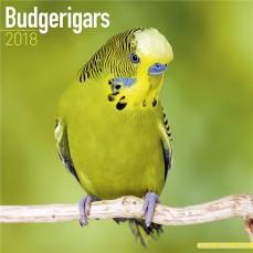 Calendrier 2018 - Les Perruches Ondulées