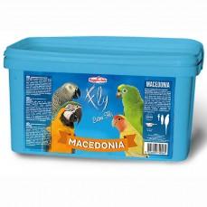 Raggio di Sole - Macedonia 1,2 kg - Mélange de Fruits, Légumes et Noix Séchés