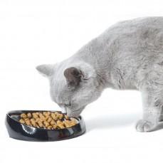 Mangeoire Ergonomique Spéciale Chiens et Chats au museau applati. Persans et British Whisker 2 Savic