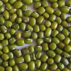 Fève de Soja Vert (Graine de Katjang Idjoe) - Détail 1 kg