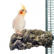 Corky Chew Medium - Plateforme en liège pour grandes perruches