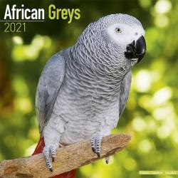 Calendrier 2021 - Les Perroquets Gris du Gabon