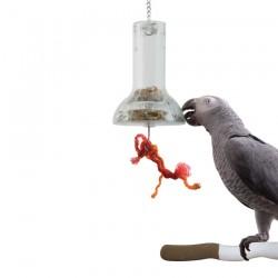 La Cloche de Foraging - Distributeur Alimentaire pour Perroquet