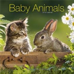 Calendrier 2019 - Les Bébés Animaux