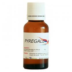 Pyregale - Soin de la Gale Liquide pour Application Cutanée - 20 ml