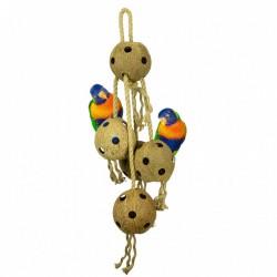 Coconut Chain - XL