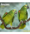 Calendrier 2019 - Les Amazones