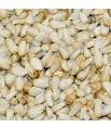Graines de Cardy - 800 gr