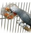 La Roue de Foraging - Distributeur Alimentaire pour Perroquet