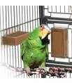 Buffet Large - Kit de Démarrage - Distributeur Alimentaire pour Perroquet