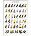 Poster Oiseaux : Les Différentes Espèces d'Inséparables n°2