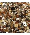 Versele Laga - Mélange de Graines Perroquet Exotic Fruit Mix - Vrac 3 kg